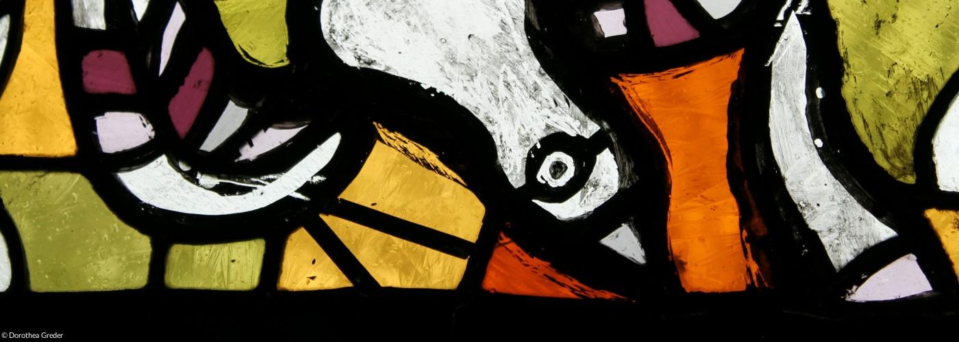 Taube im Fenster der Jakobuskirche